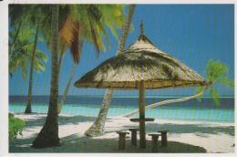 Maldives, Seaside Used - Maldives