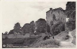 BEAUMONT / LA TOUR SALAMANDRE ET LA POTERNE - Beaumont