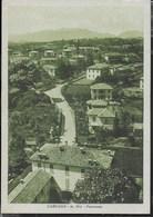 LOMBARDIA - CARNAGO (VA) - PANORAMA - ED. SOMMARUGA - VIAGGIATA DA CARNAGO 02 06.1941 - Altre Città