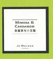 Cartes Parfumées  CARTE  JO MALONE LONDON  ASIATIQUE MIMOSA & CARDAMOM - Modern (from 1961)