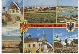FREISTADT RUST BURGENLAND AUSTRIA  CPM  E52 - Autriche
