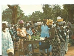Banjul Gambia Market - Postcards