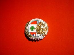 3° RH / 3° REGIMENT DE HUSSARDS / OPERATION DAMAN XXVIII / LIBAN - Armée De Terre