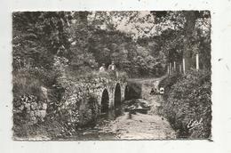 Cp , 78 , DAMMARTIN EN SERVE , Pont De L'Arche , Voyagée, Ed. Estel - France