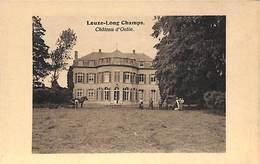 Leuze-Long Champs - Château D'Ostin (animée) - Eghezée