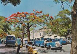 NOUMÉA, Nouvelle-Calédonie. Place Des Bus (transport Publique / Transporte Público). No Circulada / Non Voyagée - Nueva Caledonia