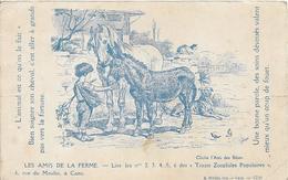 LES AMIS DE LA FERME - L'ANIMAL EST CE QU'ON LE FAIT - BIEN SOIGNER SON CHEVAL C'EST ALLER A GRANDS PAS VERS LA FORTUNE - Pferde