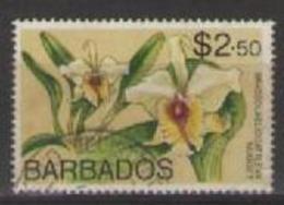 COLONIE INGLESI  BARBADOS 1974 SERIE ORDINARIA FIORI YVERT. 386 USATO VF - Barbados (1966-...)