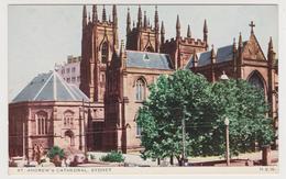[24] SYDNEY, St. Andrew's Cathedral. Vintage Postcard. / Postal Antigua. / CPA. No Escrita. / Not Write / Non écrite. - Sydney