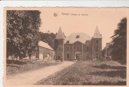 Natoye , (Hamois) , Château De Skeuvre - Hamois