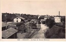 SCEAUX : La Gare De Sceaux-Robinson - Très Bon état - Sceaux