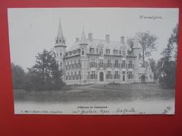 Wommelgem :Château De Selsaeten (W10) - Wommelgem