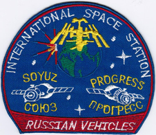 ISS Expedition 1 2 3 4 5 6 7 8 9 10 11 12 13 14 15 16 17 18 19 Progress International Space Station Iron On Patch - Patches