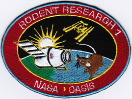 ISS Expedition 41 Dragon SPX-4 Rodent International Space Station Iron On Patch - Patches