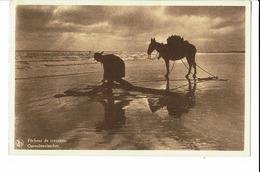 CPA - Carte Postale - BELGIQUE - Nieuwpoort - Pêcheur De Crevettes-  S1385 - Nieuwpoort