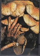 GUYANA 1990  - Sparriger Schüppling  MiNr: Block 109 Used - Pilze