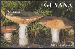 GUYANA 1990  - Russula Integra  MiNr: Block 142 Used - Pilze
