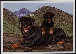 Zm9906b ZAMBIA 1999, Cats And Dogs, K4000 Min Sheet - Rottweiler Dog - Zambia (1965-...)