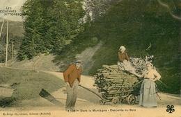 Les Cévennes Pittoresques N°1708 - Ardèche - Dans La Montagne , Descente Du Bois - Artige Aubenas - 1908 - AA14 - France