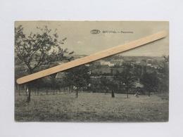 GENAPPE «PANORAMA DE BOUSVAL( 1925 )animée /Édit Vve MIESSE - DENIS (PRÉAUX,Ghlin). - Genappe
