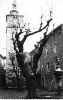 83 - LA ROQUEBRUSSANNE : Le Clocher Et La Fontaine - CPSM Photo GF - Var - La Roquebrussanne