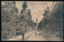 AVERBODE = DREVE DE L'ABBAYE - Scherpenheuvel-Zichem