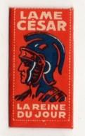 Lame De Rasoir César, La Reine Du Jour, Marque Française. Razor Blade. - Lames De Rasoir