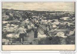 The Johannesburg Washtub Ca. 1905 - Südafrika