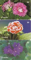 LOTE DE 3 TARJETAS DE BRASIL DE FLORES  (FLOR-FLOWER) TELERJ - Flores