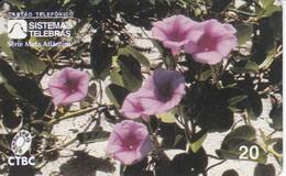 TARJETA DE BRASIL DE UNAS FLORES   (FLOR-FLOWER) TELEBRAS - CTBC - Flores