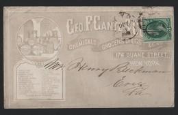 U.S.A. ADVERTISING NEW YORK GEO GANTZ CHEMICALS SODA SOAP COCONUT OIL 1870 - Souvenirs & Special Cards