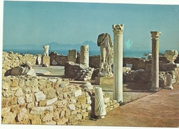TUNEZ CARTAGO RUINAS ROMANAS - Túnez