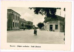 M7038 CALABRIA Nicastro Lamezia Terme Catanzaro Non VIAGGIATA Viale Stazione - Lamezia Terme