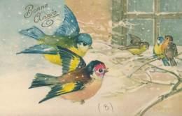 """CPA -11273 Illustrateurs - Très Belle Illustration """"Mésanges - Bonne Année """" Signée  A. Jacques  (à Confirmer) - Illustrateurs & Photographes"""