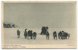 Groenland Départ Du Traîneau à La Chasse - Greenland