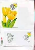 Belgie Andre Buzin Birds 3223 Flowers Tulip  FDC + Herdenkingskaart + Signature Andre Buzin RR!! - 1985-.. Oiseaux (Buzin)
