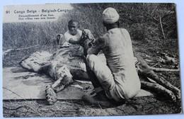 CPA Buta Congo Belge Dépouillement D'un Lion Chasse Tampon 321 - Belgian Congo - Other