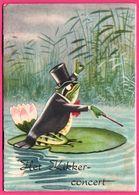 Livret Avec Histoire - Het Kikkerconcert - Grenouille Humanisée - Frog - Voor Het Kind - Histoire En Néerlandais - 1954 - Animaux & Faune