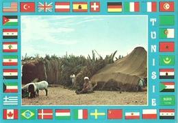 TUNEZ VUE DE TENTE BEDOUINE - Túnez