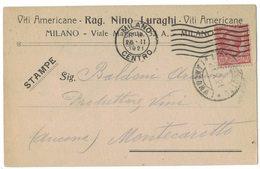 A138   Viti Americane, Vitigni N.Luraghi Cartolina X Produttore Vini Montecarotto - 1921 Wine,Vino - Vini E Alcolici