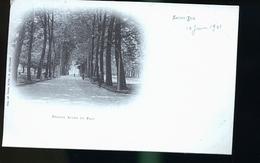 SAINT DIE    TIRAGE 1899 - Saint Die