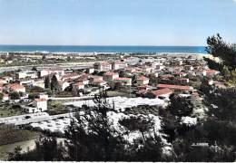 06 - SAINT LAURENT DU VAR : Vue D'ensemble - CPSM GF - Alpes Maritimes - Saint-Laurent-du-Var