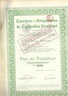 Carrières & Briqueteries De Coucelles-Braibant - Actions & Titres