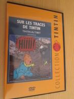 TIN718 DVD Neuf (jamais Utilisé) REPORTAGE SUR LES TRACES DE TINTIN : TINTIN AU TIBET - Hergé