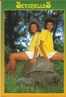Seychelles Giant Land Tortoise With Locals Dino Sassi - Seychellen