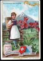CHROMO LIEBIG , S 474, Fleurs Alpines, Zurich, Primevere Des Alpes - Liebig