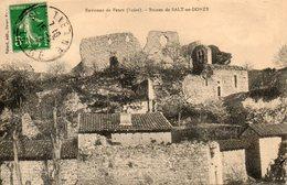 42. Environs De Feurs. Ruines De Salt En Donzy - France