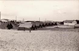 Vendee, Britignolles Sur Mer, Colonie De Vacances C.c.a.s.       (bon Etat) - Bretignolles Sur Mer