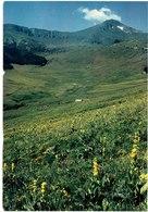 CPM FRANCE 15 CANTAL DIVERS - Le Puy Mary - Non Classés