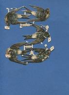 Bel Ensemble Joli Chromo Découpis Animaux Hirondelle Message Partiellement Attachés  WH 5056 6,5 Cm Environ - Animali